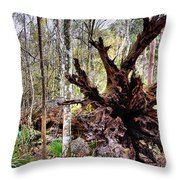 Cypress Roots Throw Pillow by Kristin Elmquist