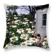 Daises Delight II Throw Pillow by Doug Kreuger