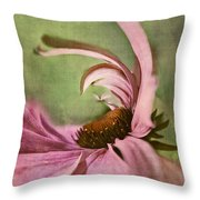 Daisy Fun - A01v04b2t05 Throw Pillow by Variance Collections