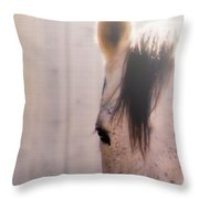 Dapple Devotion Throw Pillow by Betty LaRue