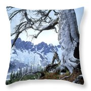 Dead Spruce In Old Forest Fire, Nabob Throw Pillow by David Nunuk