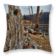 Dead Wood Throw Pillow by Paul Ward