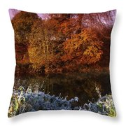 Deciduous Woods, In Autumn With Frost Throw Pillow by The Irish Image Collection