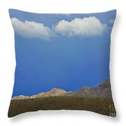 Desert Rain Throw Pillow by Methune Hively