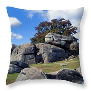 Devil's Den Formation 25 Throw Pillow by Paul W Faust -  Impressions of Light