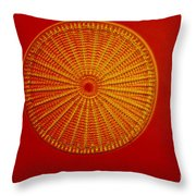 Diatom - Arachnoidiscus Ehrenbergi Throw Pillow by Eric V. Grave