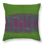 Diatom - Surirella Throw Pillow by Eric V. Grave