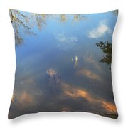 Different Worlds Throw Pillow by Karol Livote