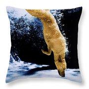 Diving Dog Throw Pillow by Jill Reger