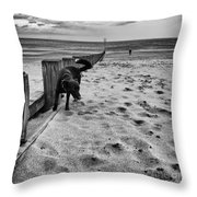 Doing What Dogs Always Do Throw Pillow by John Farnan