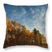 Dressed In Autumn Colors Throw Pillow by Priska Wettstein