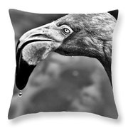 Dripping Flamingo - Bw Throw Pillow by Christopher Holmes