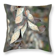 Dry Leaves Throw Pillow by Lisa Phillips