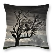 Dry Sunset Throw Pillow by Stelios Kleanthous