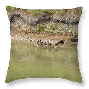 Ducks In A Row Throw Pillow by Corinne Elizabeth Cowherd