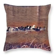 Ducks On Canvas Throw Pillow by Douglas Barnard