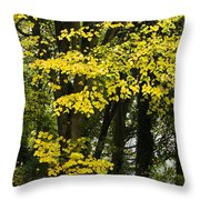 Dun Na Ri Forest Park, County Cavan Throw Pillow by Peter McCabe