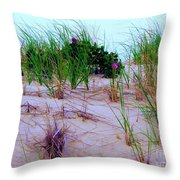 Dunes Throw Pillow by Susan Carella