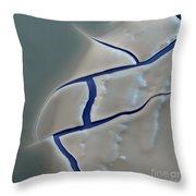 E. Coli Endotoxin Sem Throw Pillow by Eye of Science