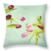 Eager For Spring Throw Pillow by Priska Wettstein