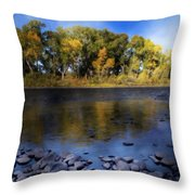 Early Fall At The Headwaters Of The Rio Grande Throw Pillow by Ellen Heaverlo