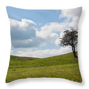 Early Spring Throw Pillow by Semmick Photo