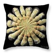 Efficiency Throw Pillow by Adam Long