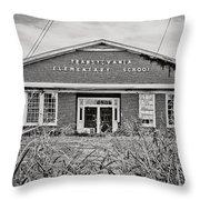 Elementary School Throw Pillow by Scott Pellegrin