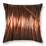 Enamel Coated Copper Wire Throw Pillow by Photo Researchers
