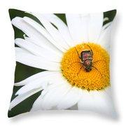 Enemy Mine Throw Pillow by Kristin Elmquist