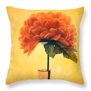 Estillo - 01i2t03 Throw Pillow by Variance Collections