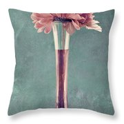 Estillo Vase - S01v4b2t03 Throw Pillow by Variance Collections