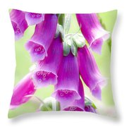 Faerie Bells Throw Pillow by Rory Sagner