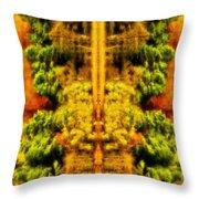 Fall Abstract Throw Pillow by Meirion Matthias