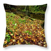 Fall Along Middle Fork Throw Pillow by Thomas R Fletcher