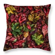 Fall Autumn Leaves Throw Pillow by John Farnan