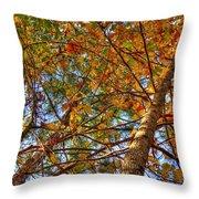 Fall Canopy Throw Pillow by Barry Jones