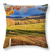 Fall Colours, Cows In Field And Mont Throw Pillow by Yves Marcoux