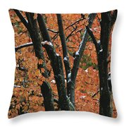 Fall Foliage Of Maple Trees After An Throw Pillow by Tim Laman