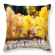 Fall In The Sierra Throw Pillow by Carol Leigh