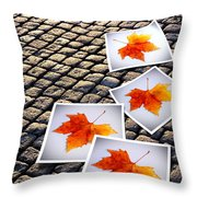 Fallen Autumn  Prints Throw Pillow by Carlos Caetano