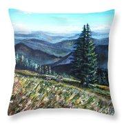 Family Hike Throw Pillow by Shana Rowe Jackson