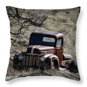 Farm Fresh Ford Throw Pillow by Steve McKinzie