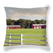 Farm Pasture Throw Pillow by Brian Wallace