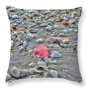 Fashion Satement Throw Pillow by Greg and Chrystal Mimbs