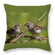 Feeding Time Throw Pillow by Bruce J Robinson