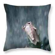 Feels Like The First Time Throw Pillow by Laurie Search