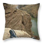 Feet Shod In River Shoes On An Overlook Throw Pillow by Bobby Model