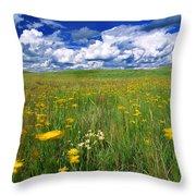 Field Of Flowers, Grasslands National Throw Pillow by Robert Postma