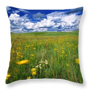 Field Of Flowers, Grasslands National Throw Pillow by Robert Postma